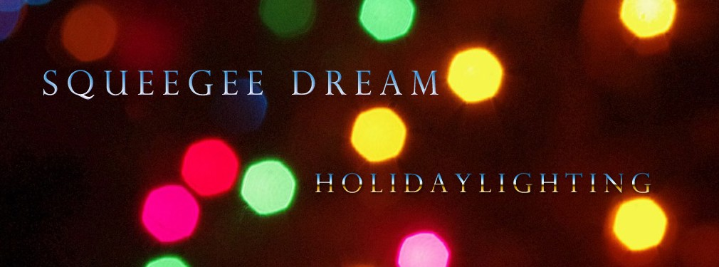 Squeegee Dream Lighting Service